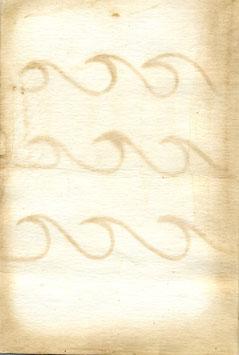 adriana-antotipo